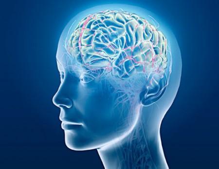 Cara Melatih Otak Kanan dan Otak Kiri